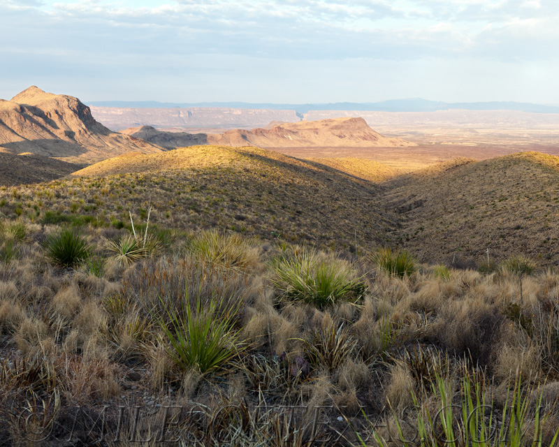 Big Bend Sotol Vista Overlook Early Morning