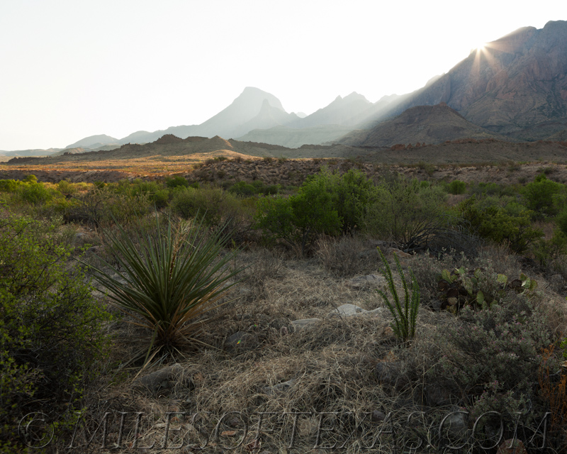 Big Bend Morning Mountain Rays